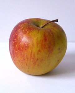 compote-deux-coups-cuillere-pomme-L-1
