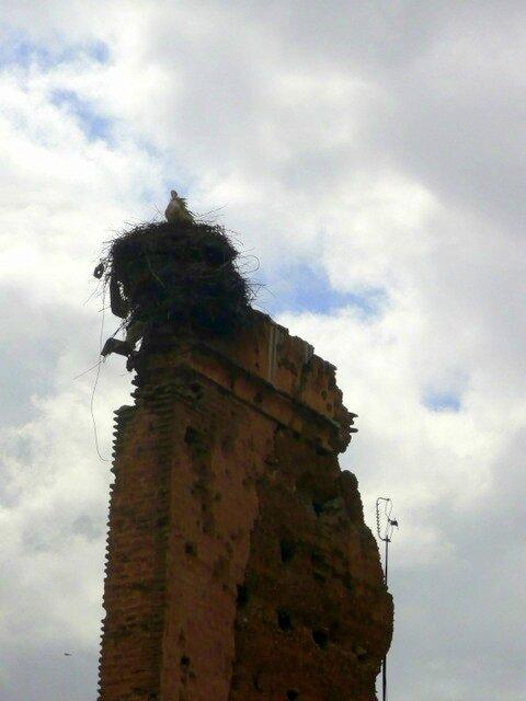 05 ruines