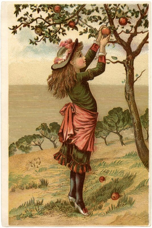 Vintage_Apple_Picking_Image_GraphicsFairy_685x1024