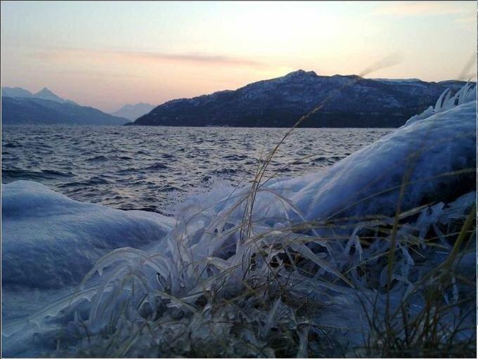vinter _