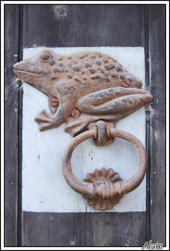 la grenouille de fer