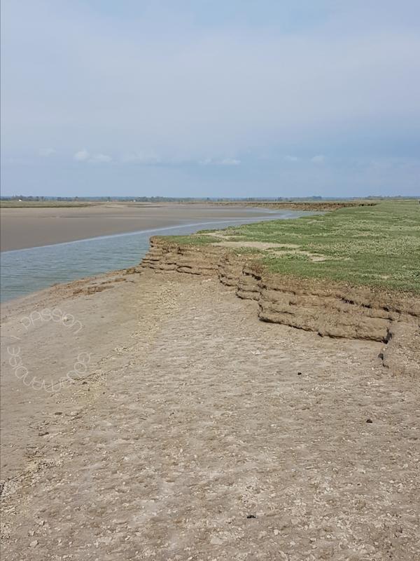 Baie de Somme, Traversée de la Baie_9