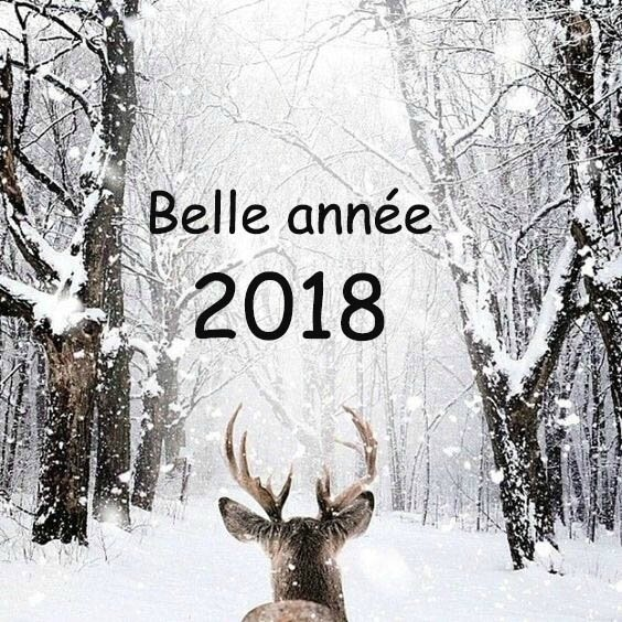 voeux2018