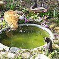 Pour ce lundi j'ai choisi la fontaine du jardin