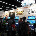 Bornes Wii U sur l'imense village nntendo