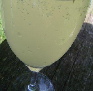 elder_flower_champagne