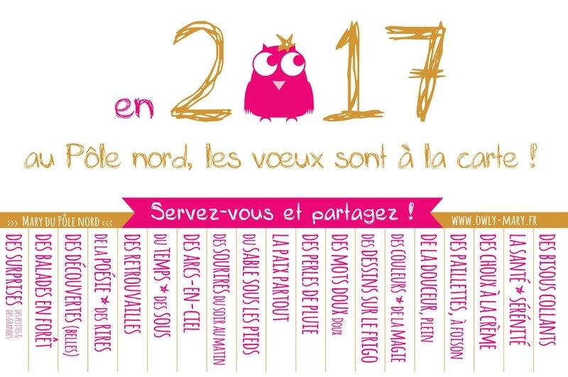 voeux bonne annee 2017 3