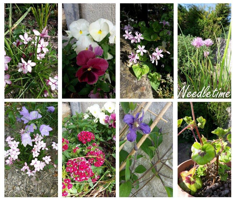Le jardin printemps 2015 #2