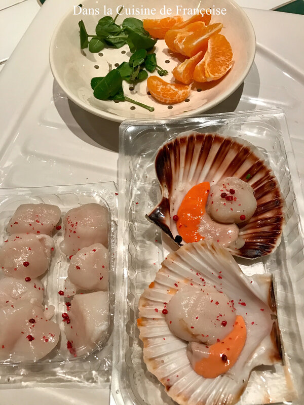 Coquilles 3