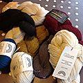 Le plein de laine