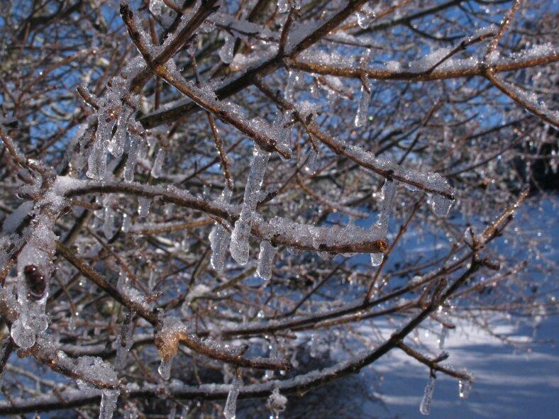 gel sur le plateau de Lacamp