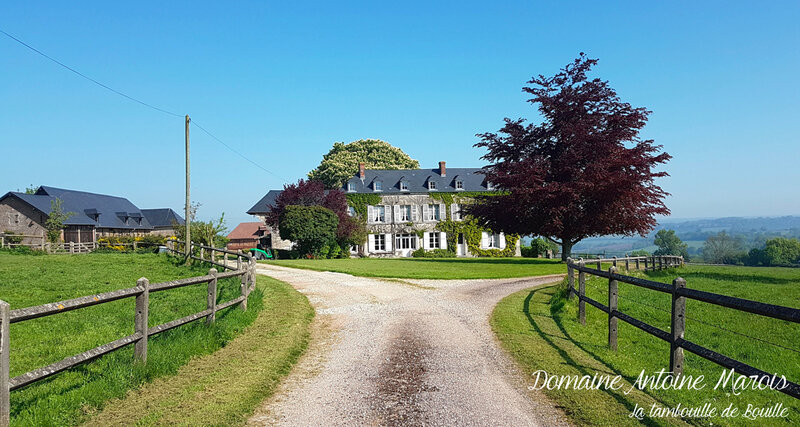 visite-domaine-cidre-Antoine-Marois-Cambremer-Normandie