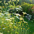 Windows-Live-Writer/Jardin_10232/DSCN0756