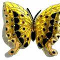 2010_090404-09-10-papillons0027