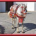 picresized_1304872602_Ronda - Plaza De Toros 097 (41)