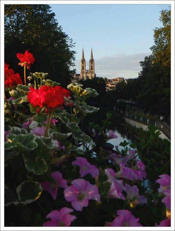 Niort soir fleurs eglise lumiere 100714