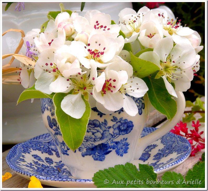 Pâques en fleurs (7)