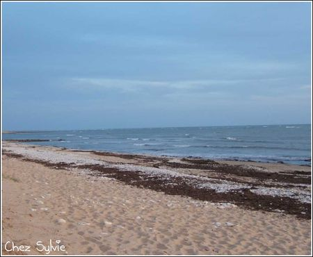 Plage_camping2