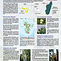 poster_mayotte