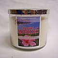 Aloha waikiki, bath and body works