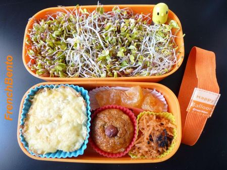 graines_germ_es_french_bento