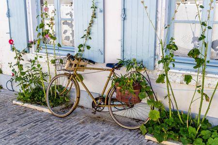 Vélo sur l'Ile de ré-1 (1280x853)
