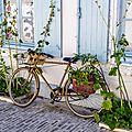 Vélo sur l'ile de ré (août 2013)