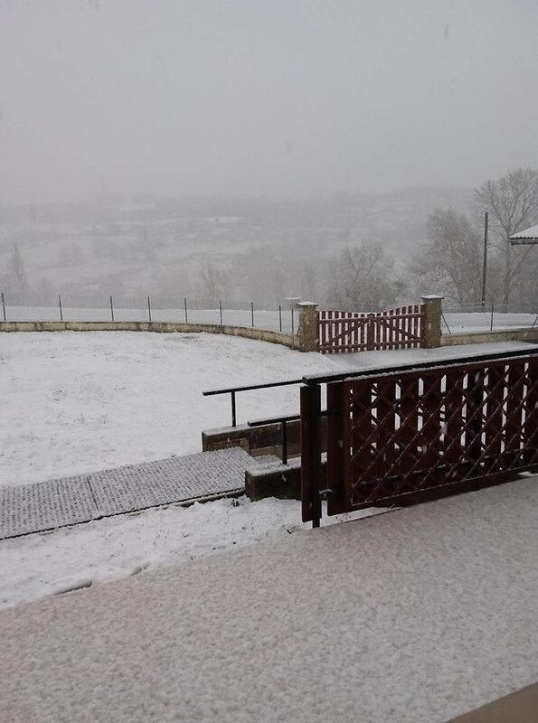 neige 1er fev 2019 2