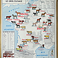 Collection ... carte le gros elevage / le rhone et ses affluents