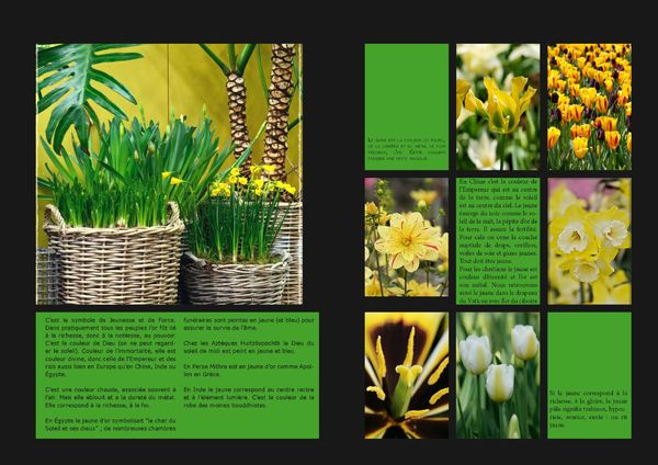GardenColours1_Page_05